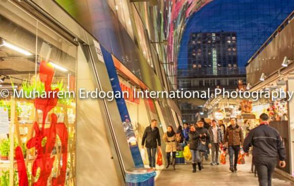 Architecture Rotterdam 11 – 01 – 2015